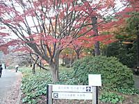 2014120413140001